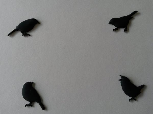 magneten-zwartraafje