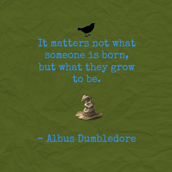 harry-potter-quote-it-matters-not