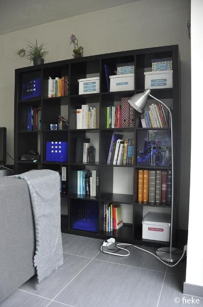 boekenkast - Fiekefatjerietjes