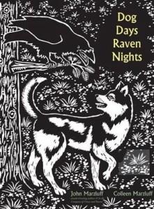 dogdaysravennights